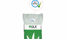 DLF Select, when seed purity matters