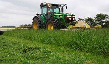 2G Festuloliums – Combining all the good from three forage species