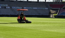 Choosing the right turf mixture…