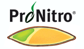 ProNitro® N-coating gives grass seed a head start