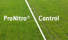 Save time and money with ProNitro® seed treatment