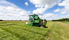 Under-performing grass? Find a new variety to boost production