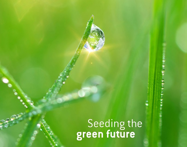 Grass with drops of water with the text: Seeding the green future